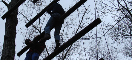 Guests climbing on the great ropes course.